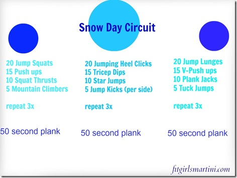 Snow Day Circuit